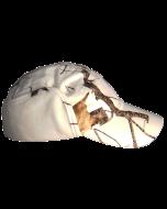 Schneetarn Mütze